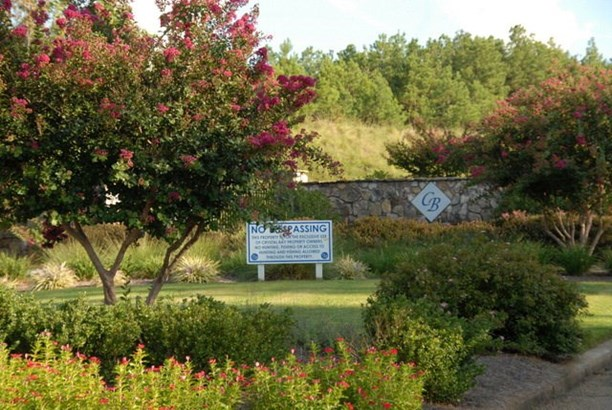Residential/Subdivision Lot - Cross Hill, SC (photo 2)