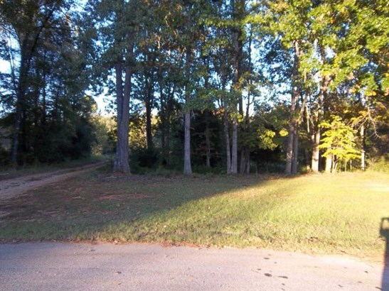 Residential Acreage - Abbeville, SC (photo 1)