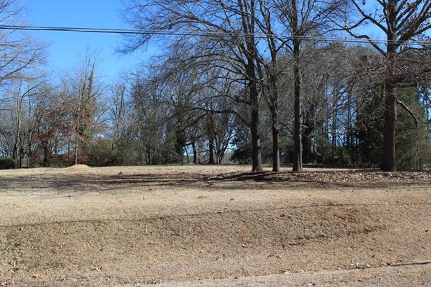 Residential/Subdivision Lot - Ninety Six, SC (photo 2)
