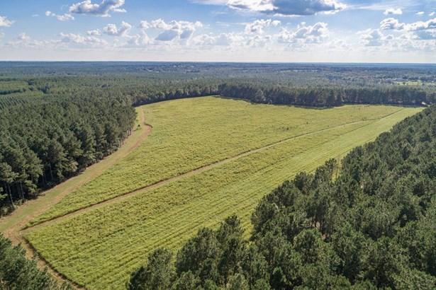 Agricultural - Laurel Hill, FL