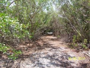 Vacant Land - Plantation Key, FL (photo 3)