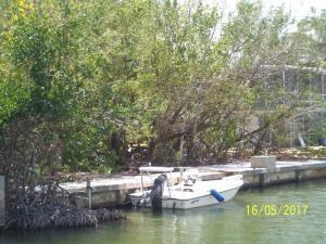 Vacant Land - Plantation Key, FL (photo 4)