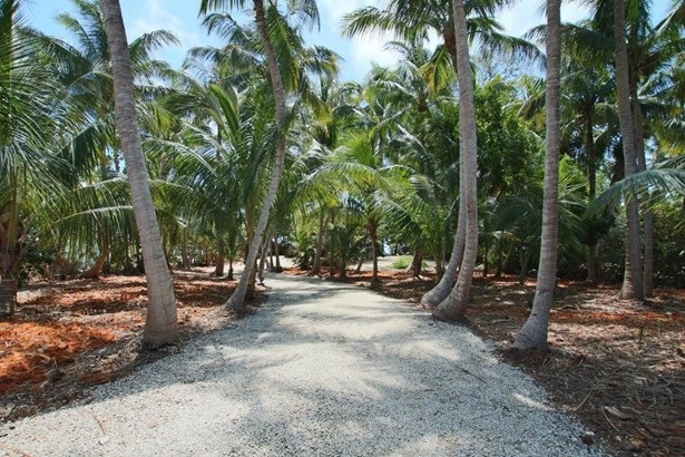 Residential - Single Family - Lower Matecumbe, FL (photo 5)
