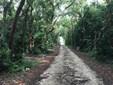 Vacant Land - Key Largo, FL (photo 1)