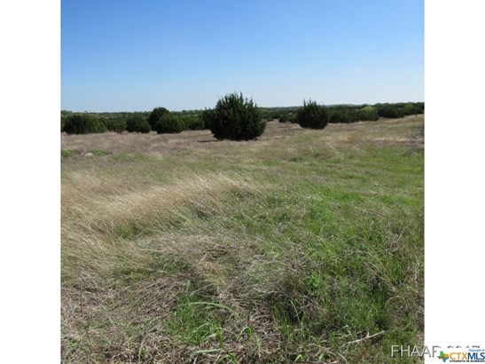 Acreage - Killeen, TX (photo 4)