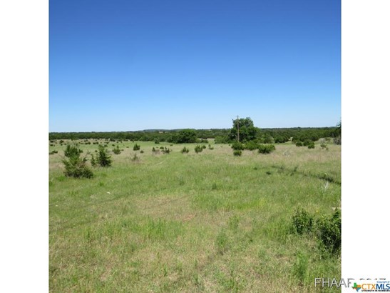 Farm/Ranch - Killeen, TX (photo 2)