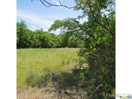 Acreage - Killeen, TX (photo 2)