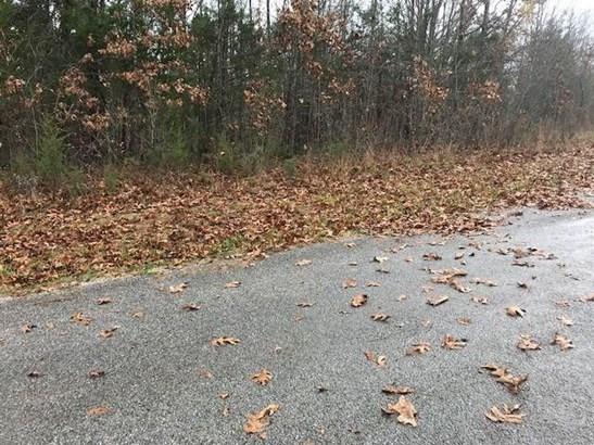 0 Misty Lane, Sparta, MO - USA (photo 2)