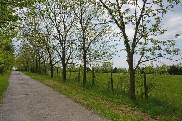 6105 South Farm Road 193, Rogersville, MO - USA (photo 3)