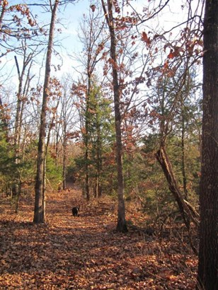Lot 32 Timber Ridge Estates, Fair Grove, MO - USA (photo 1)