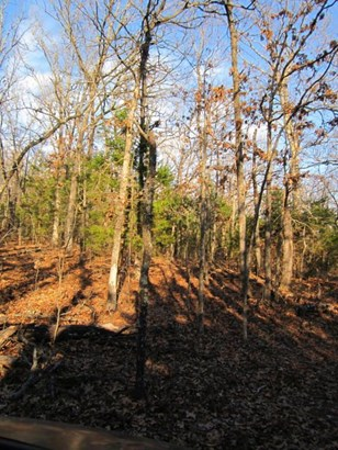 Lot 32 Timber Ridge Estates, Fair Grove, MO - USA (photo 4)