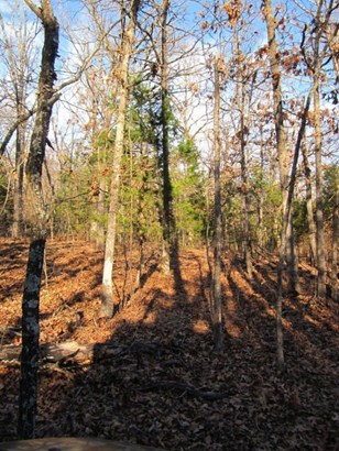 Lot 32 Timber Ridge Estates, Fair Grove, MO - USA (photo 5)