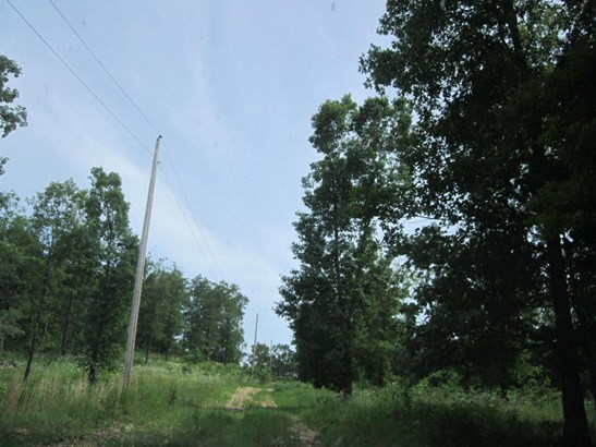 0 State Highway Ee, Aurora, MO - USA (photo 2)