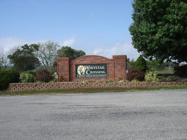 Lot 50 Whitetail Drive, Walnut Shade, MO - USA (photo 1)