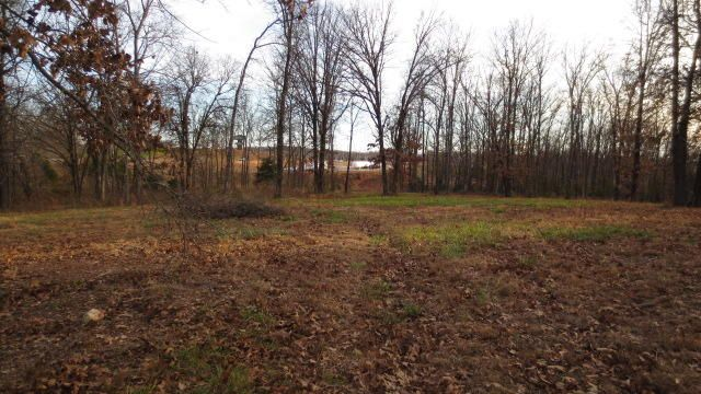 Lot C Woodfield Drive, Highlandville, MO - USA (photo 3)