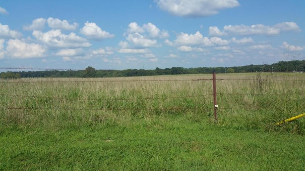 1515 State Hwy U, Rogersville, MO - USA (photo 2)