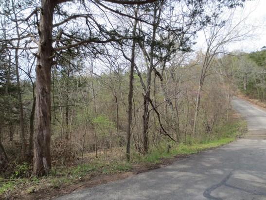 Lot 15 North Wilderness Trail, Kimberling City, MO - USA (photo 3)