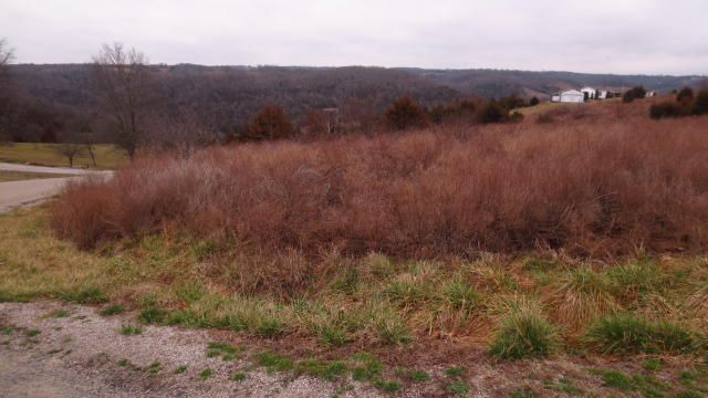 0 Hilltop Vista, Branson, MO - USA (photo 2)