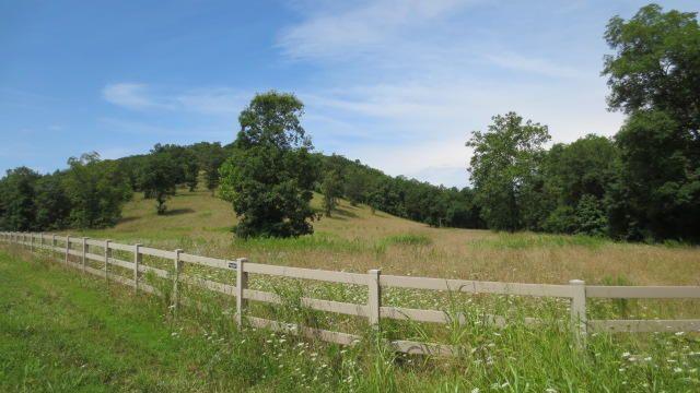 0 Brookside Drive, Saddlebrooke, MO - USA (photo 3)