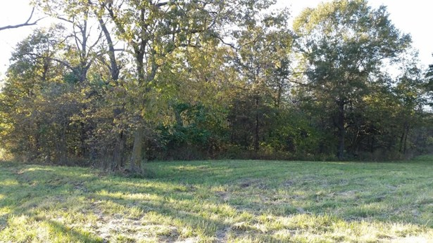 0 North Farm Road 123, Willard, MO - USA (photo 2)