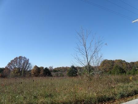 Lot 10 Country Meadows Road, Highlandville, MO - USA (photo 1)