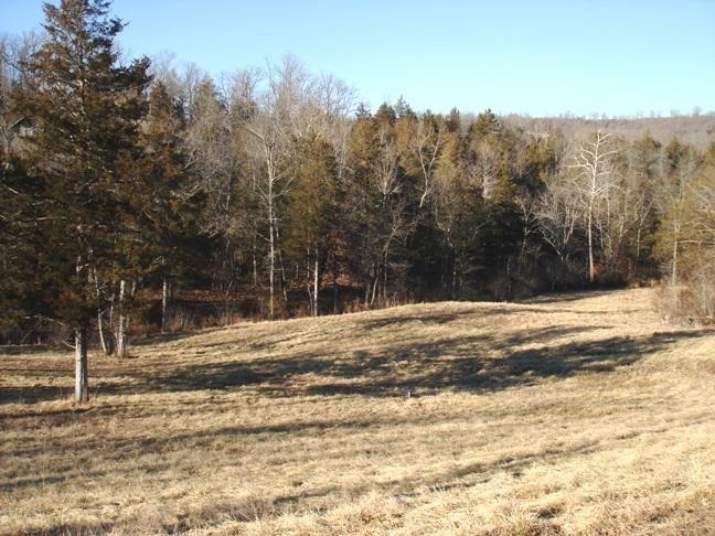 109 Appaloosa Trail, Saddlebrooke, MO - USA (photo 2)