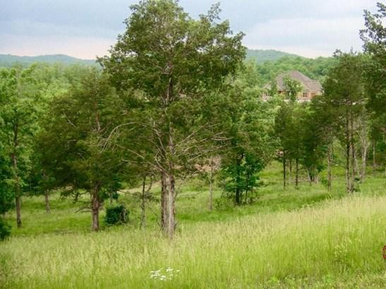 129 Ranch Road, Saddlebrooke, MO - USA (photo 2)