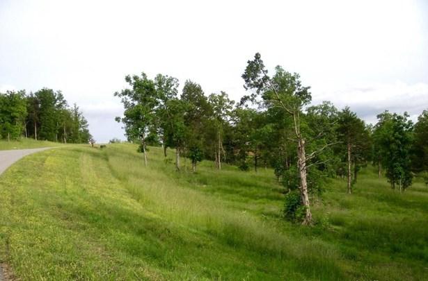 129 Ranch Road, Saddlebrooke, MO - USA (photo 4)