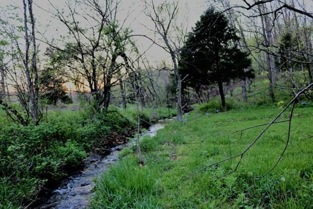 1603 Osceola Road, Fordland, MO - USA (photo 4)