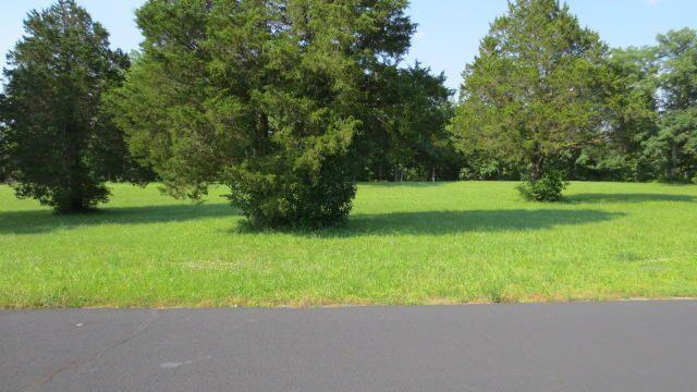 107 Seven Pines Drive, Saddlebrooke, MO - USA (photo 1)