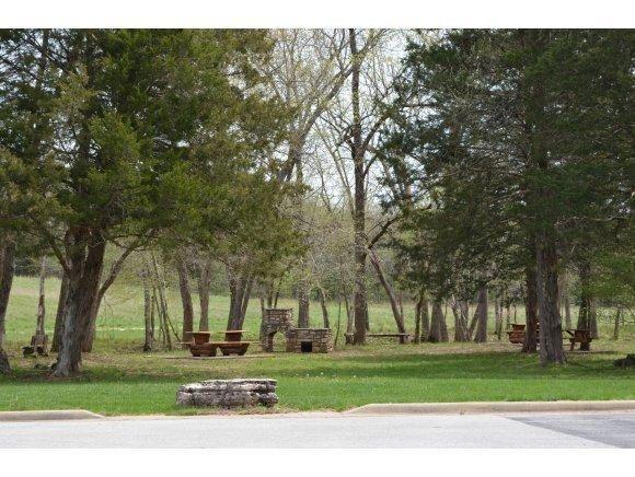 107 Seven Pines Drive, Saddlebrooke, MO - USA (photo 3)