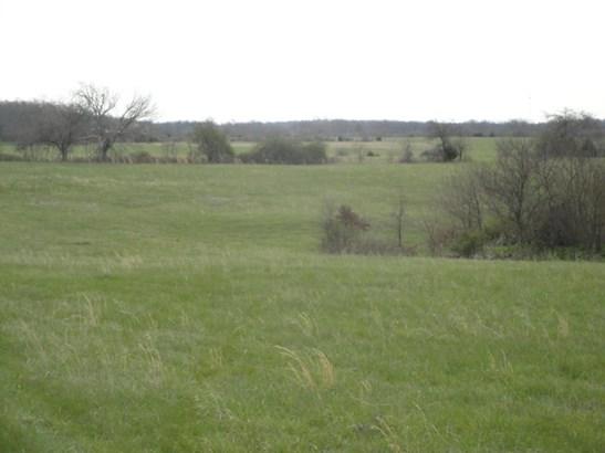 3690 North Farm Rd 83, Willard, MO - USA (photo 2)