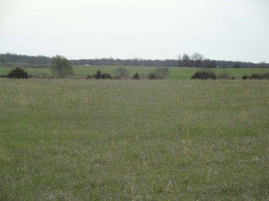 3690 North Farm Rd 83, Willard, MO - USA (photo 3)