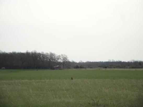 3690 North Farm Rd 83, Willard, MO - USA (photo 4)