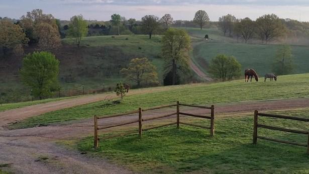 4665 State Highway 176, Chestnutridge, MO - USA (photo 3)