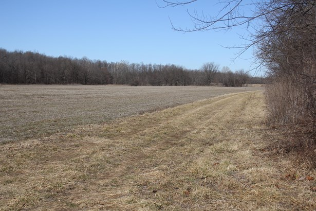 0 West State Hwy 174, Marionville, MO - USA (photo 5)