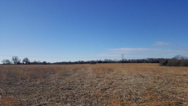 54 Ac Farm Road 186, Springfield, MO - USA (photo 1)