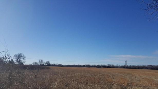 54 Ac Farm Road 186, Springfield, MO - USA (photo 3)