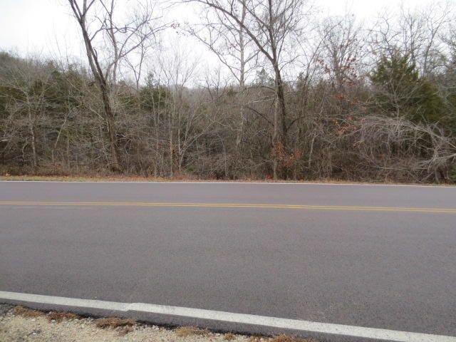 0 Lakeshore Drive, Kimberling City, MO - USA (photo 3)