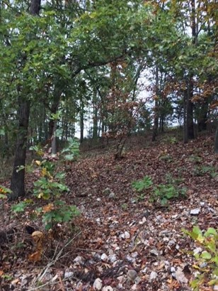 66.19acres Pleasant View Road, Highlandville, MO - USA (photo 3)