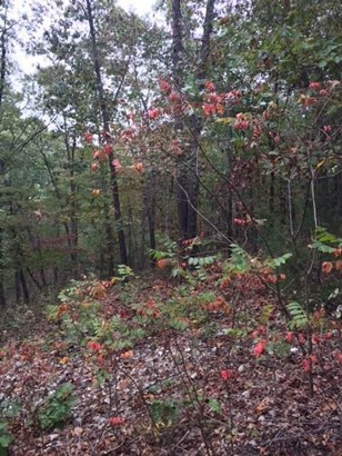 66.19acres Pleasant View Road, Highlandville, MO - USA (photo 5)