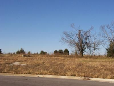 295 North Kellen Street 1, Fair Grove, MO - USA (photo 1)