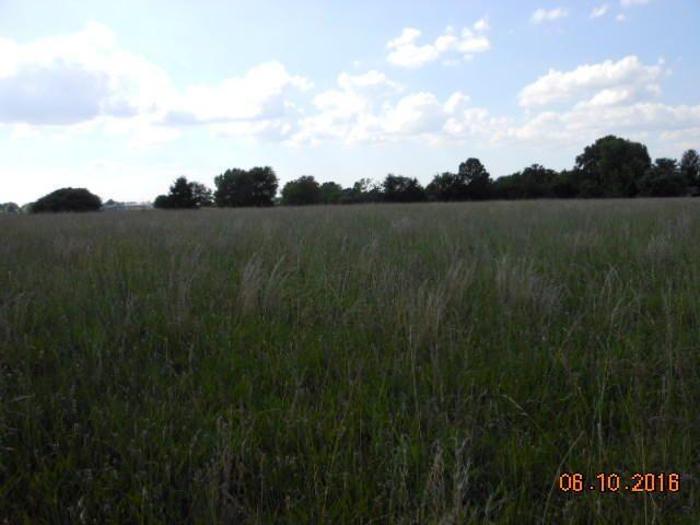 0 South State Hwy Nn, Ozark, MO - USA (photo 4)