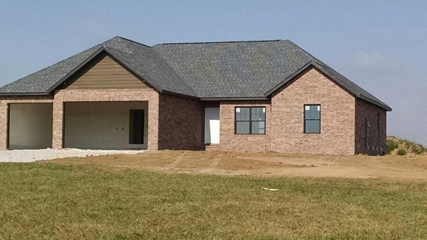 Lot 1 Southern Fields Drive, Clever, MO - USA (photo 3)