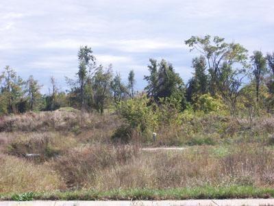 0 Stonehinge P 2, Springfield, MO - USA (photo 1)