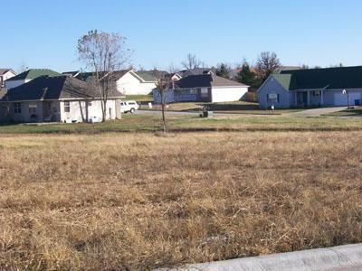 111 North Kellen Street 12, Fair Grove, MO - USA (photo 1)