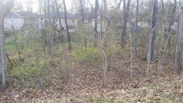 Lot 182 South Cloverdale Lane, Battlefield, MO - USA (photo 1)