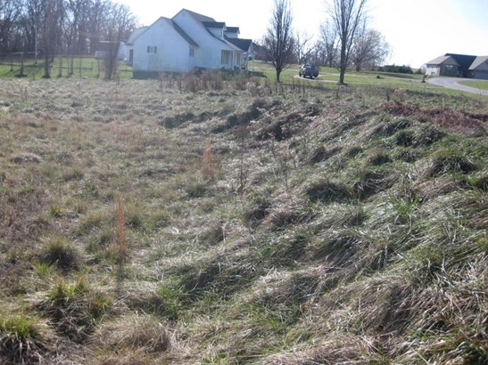Lot 2 White Oak Subdivision, Bolivar, MO - USA (photo 5)