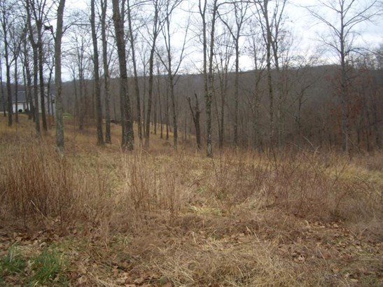 Lot 6 Woods Fork Ridge, Highlandville, MO - USA (photo 1)