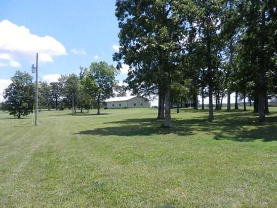 3986 South Fr 243, Rogersville, MO - USA (photo 4)